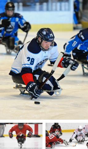 moisaique de 3 images représentant le para hockey